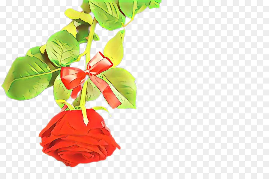 Descarga gratuita de Rojo, Flor, Hoja Imágen de Png