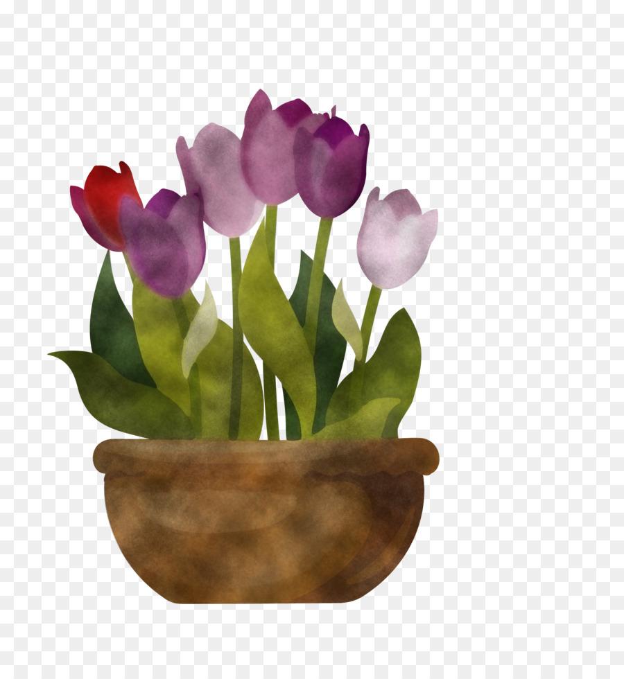 Descarga gratuita de Flor, Tulip, Maceta Imágen de Png