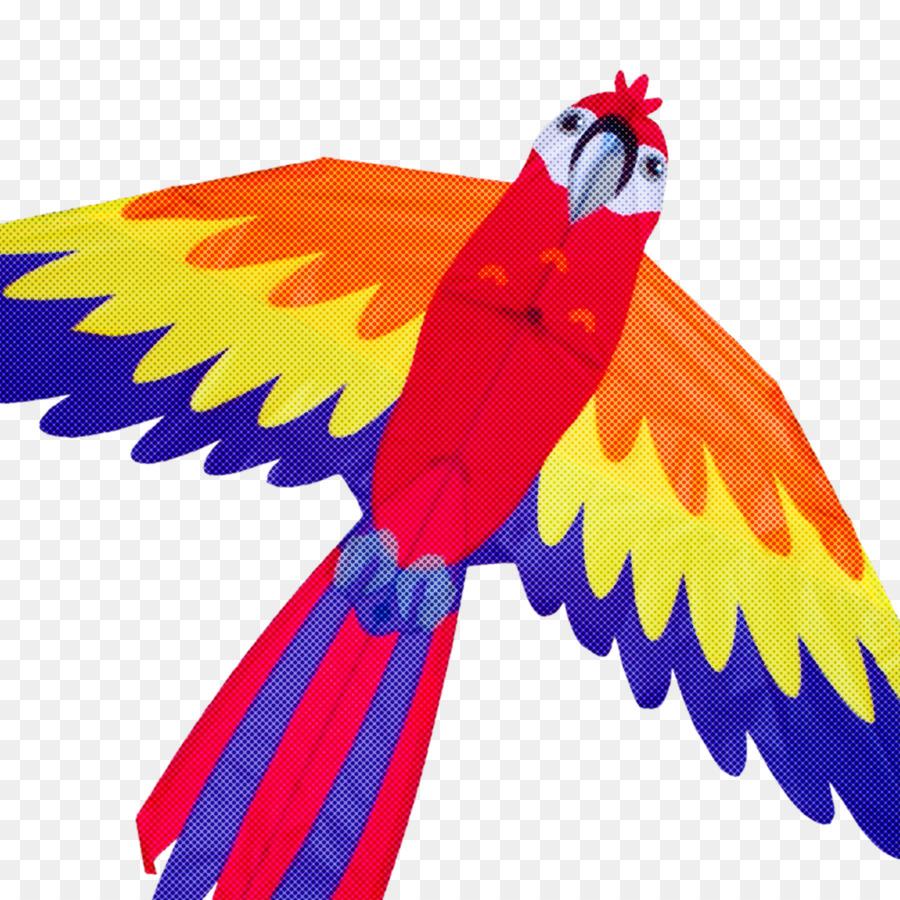 Descarga gratuita de Aves, Guacamayo, Ala Imágen de Png