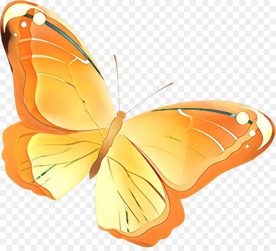 Descarga gratuita de Mariposa, Las Polillas Y Las Mariposas, Los Insectos imágenes PNG