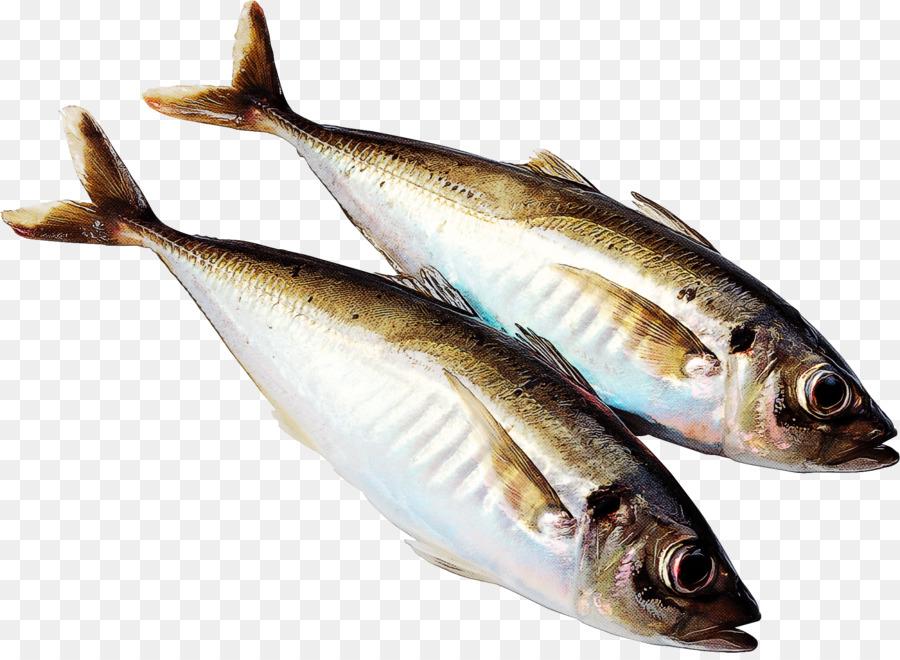 Descarga gratuita de Los Peces, Los Productos De Pescado, Arenque imágenes PNG