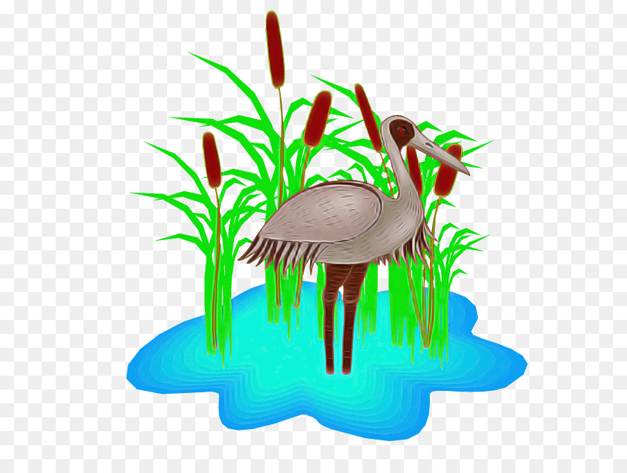 Descarga gratuita de La Hierba, Flamingo, Aves imágenes PNG