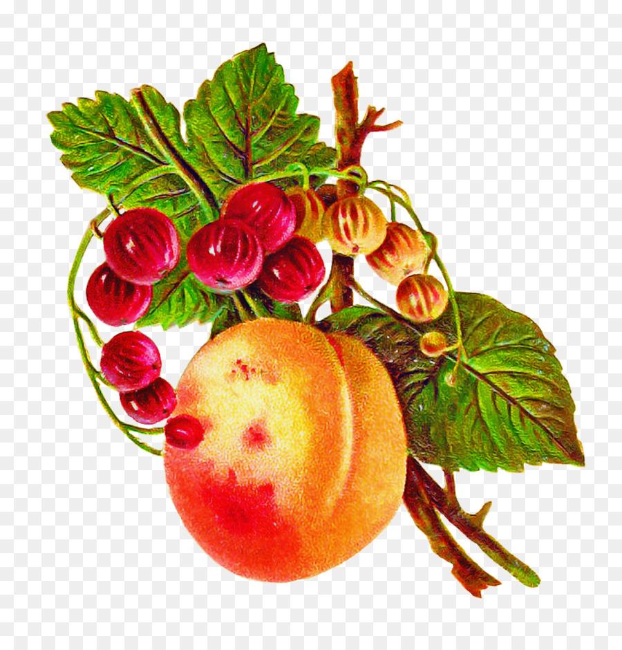 Descarga gratuita de Alimentos Naturales, Hoja, La Comida Imágen de Png