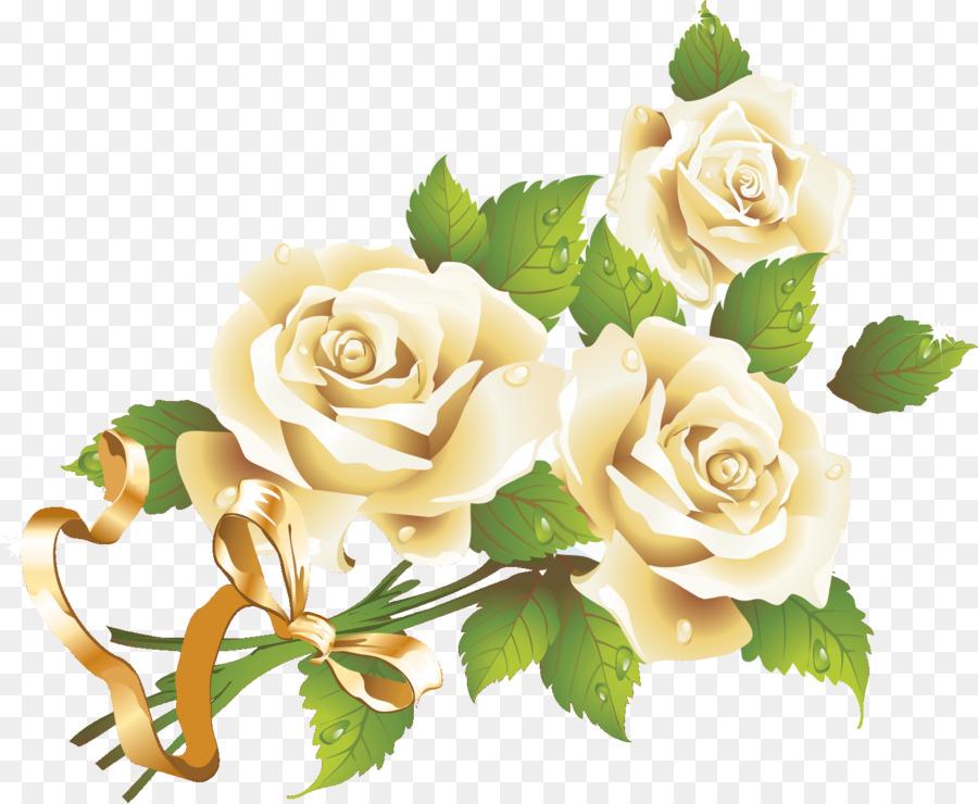 Descarga gratuita de Flor, Blanco, Rosa Imágen de Png