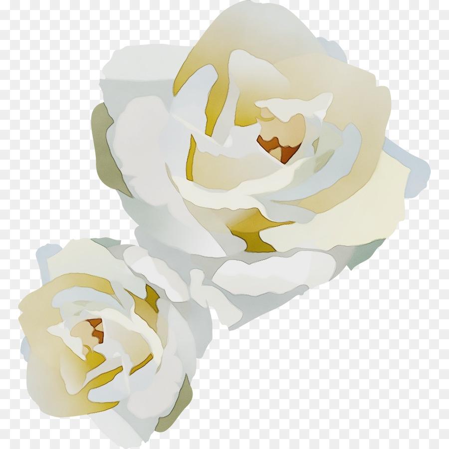 Descarga gratuita de Blanco, Flor, Pétalo Imágen de Png