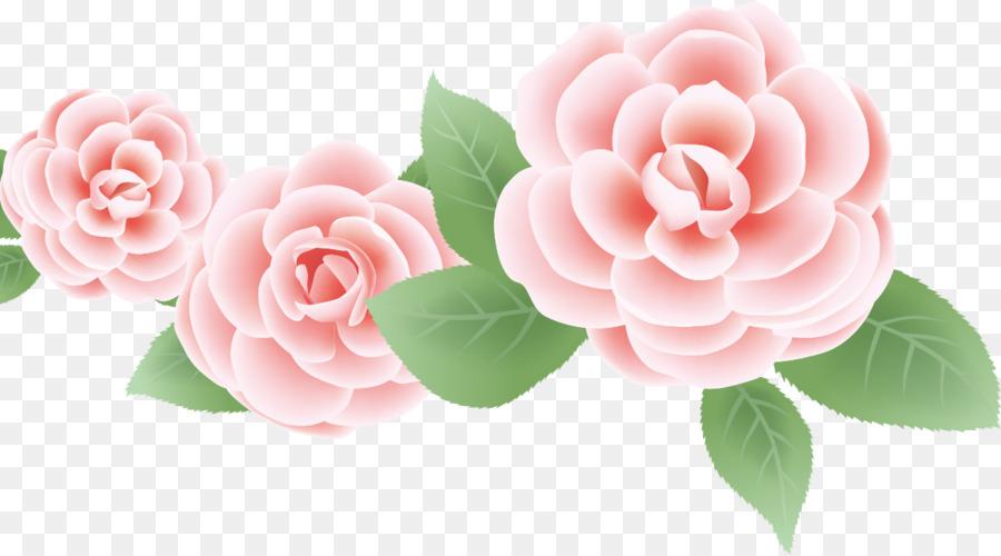 Descarga gratuita de Rosa, Flor, Las Rosas De Jardín Imágen de Png