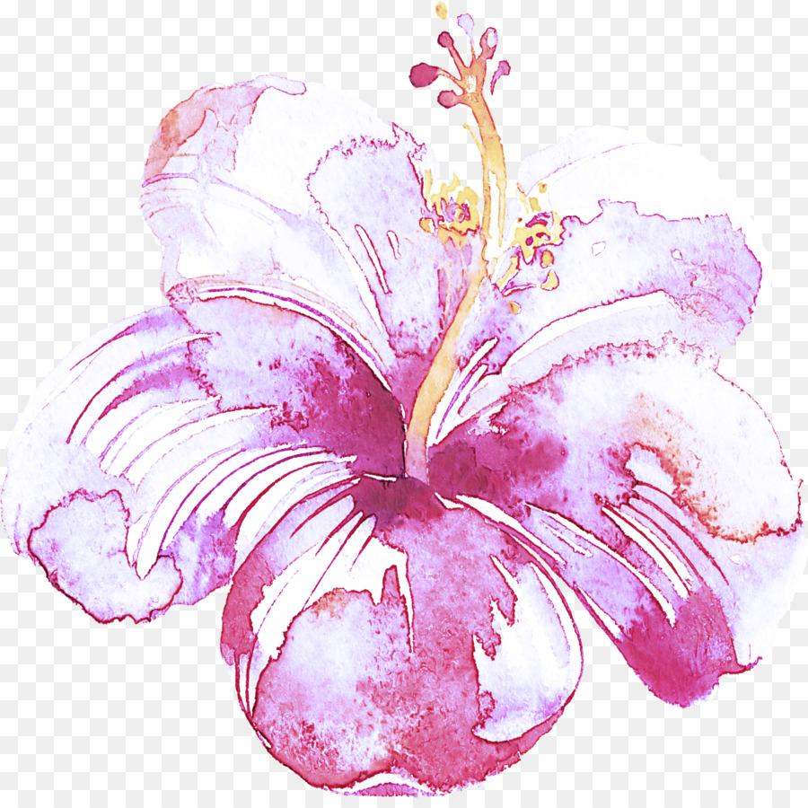 Descarga gratuita de Rosa, Hibiscus Hawaiian, Flor Imágen de Png