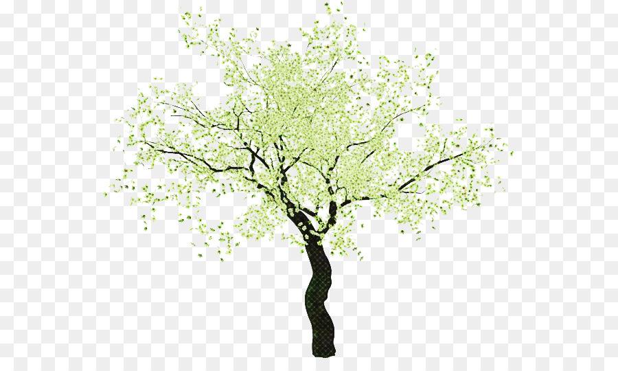 Descarga gratuita de árbol, Planta, Rama imágenes PNG