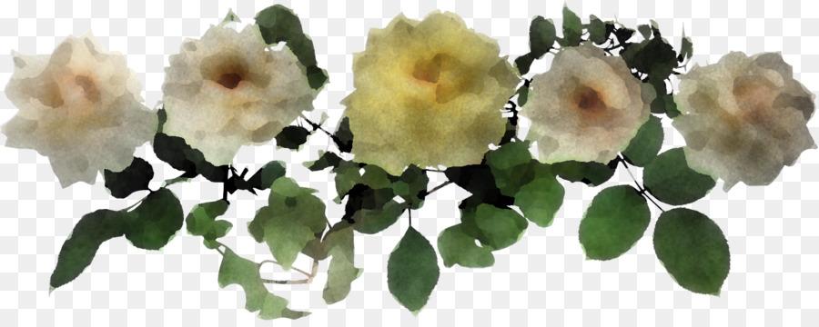 Descarga gratuita de Flor, Planta, Pétalo Imágen de Png