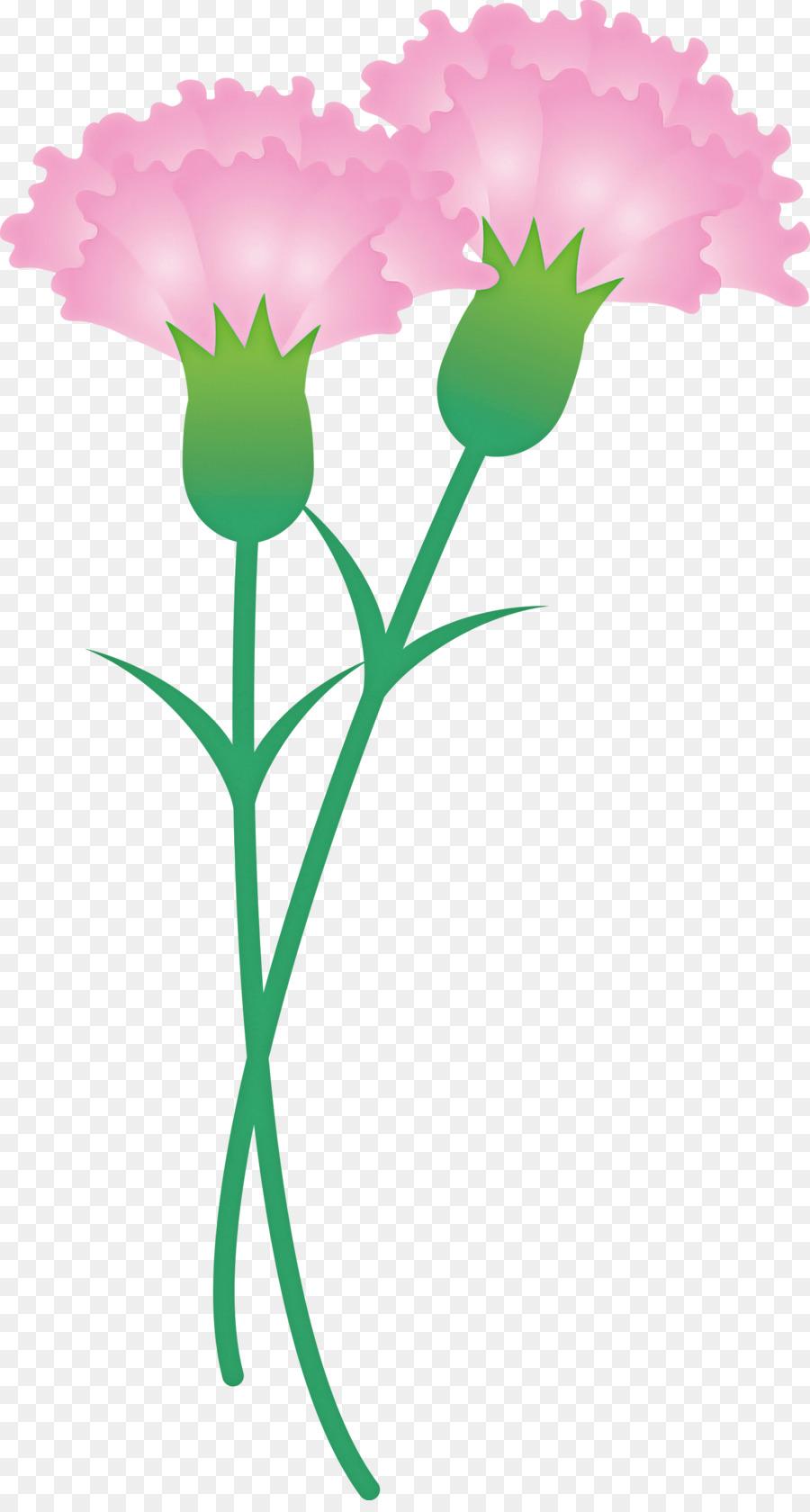 Descarga gratuita de Flor, Planta, Pedicelo imágenes PNG