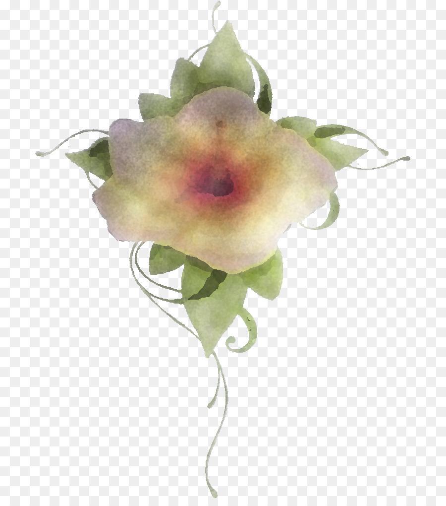 Descarga gratuita de Blanco, Flor, Planta Imágen de Png