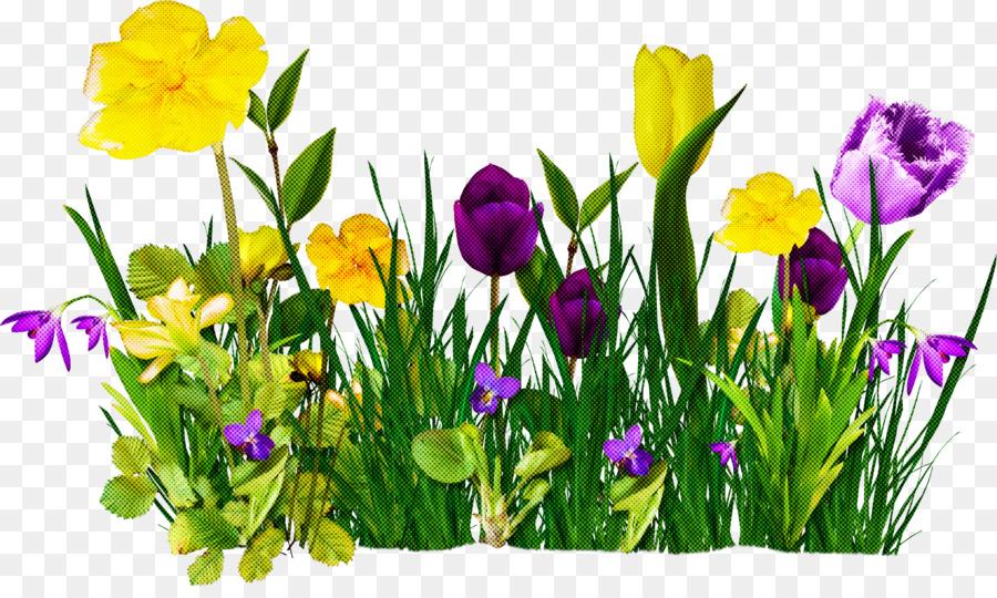 Descarga gratuita de Flor, Planta, Amarillo Imágen de Png