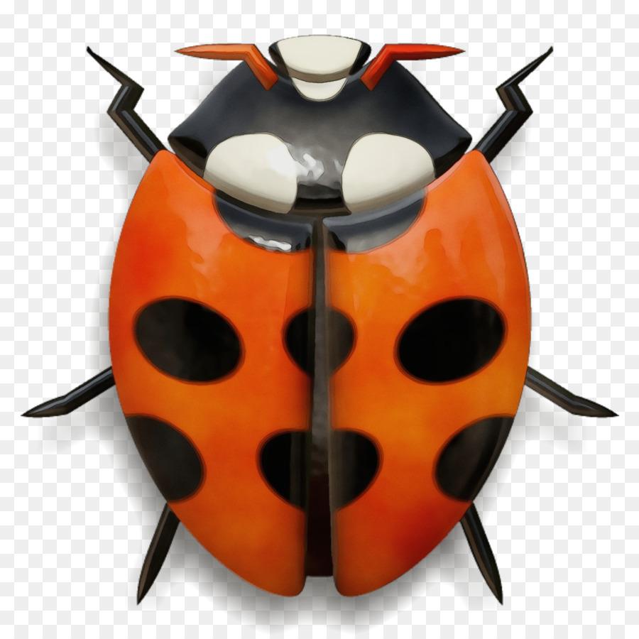 Descarga gratuita de Los Insectos, Naranja, Ladybug Imágen de Png