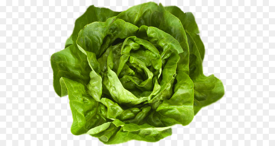 Descarga gratuita de Hoja Vegetal, Verde, Hoja imágenes PNG