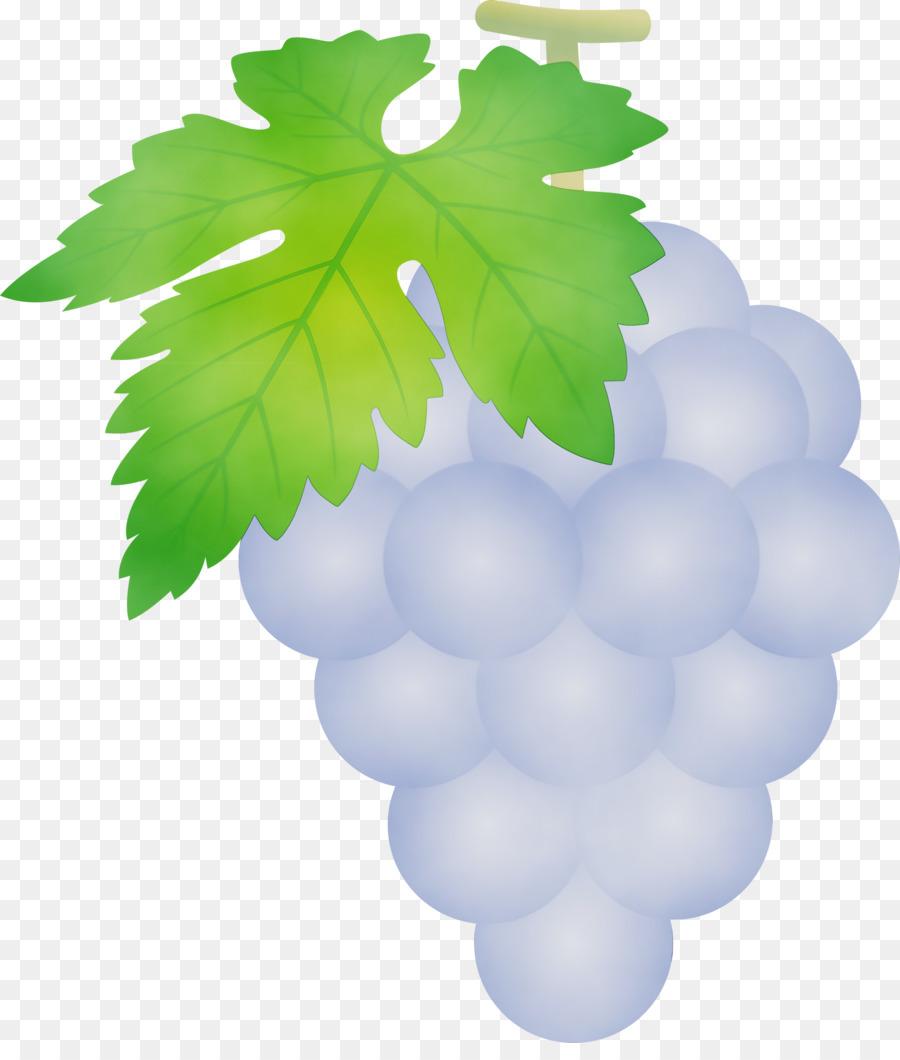 Descarga gratuita de Uva, Verde, Fruto Sin Semilla Imágen de Png