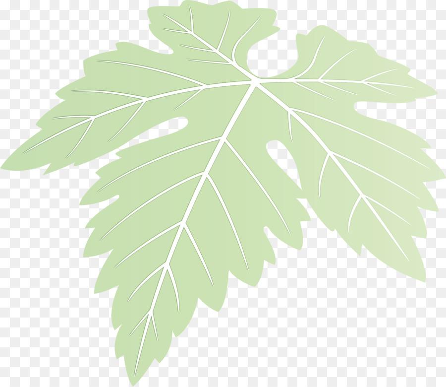 Descarga gratuita de Hoja, Planta, Flor imágenes PNG