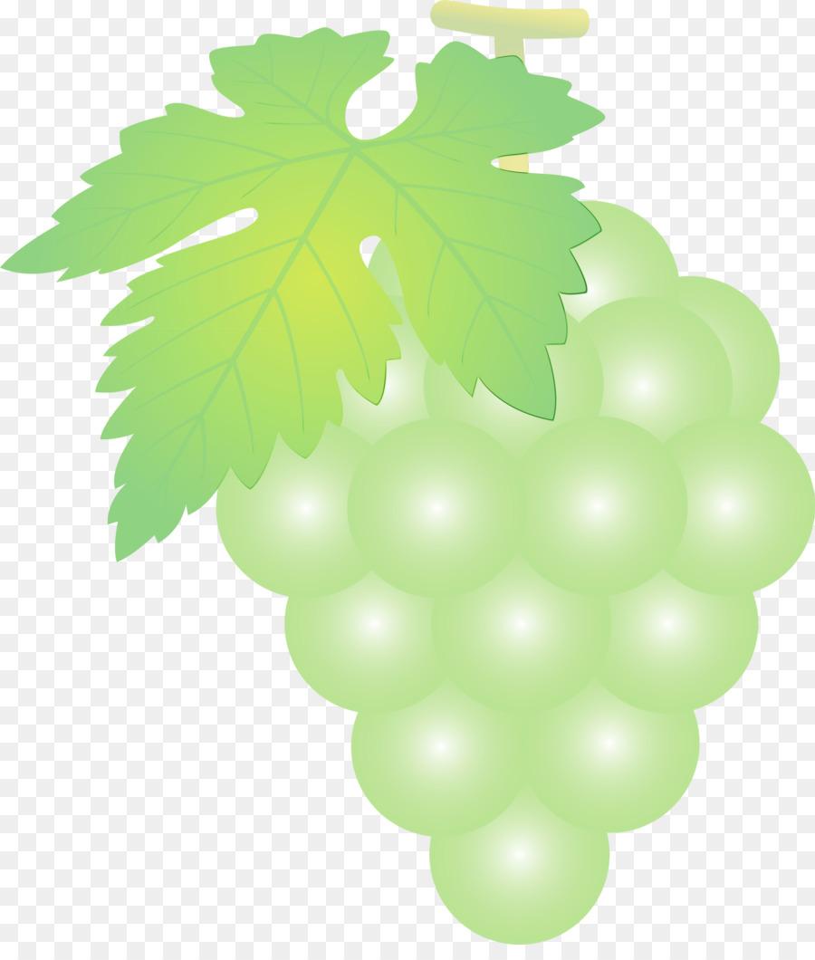 Descarga gratuita de Uva, Verde, Hoja Imágen de Png