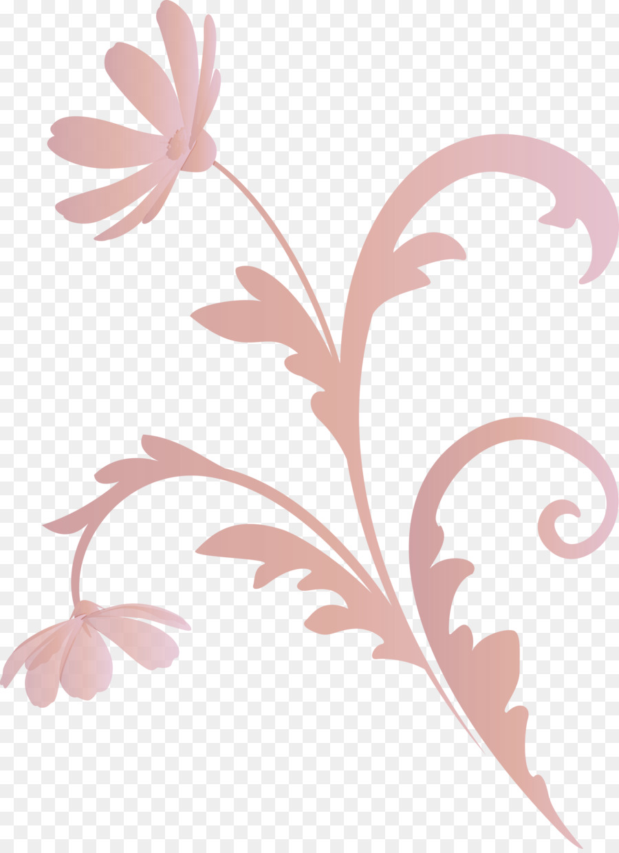Descarga gratuita de Hoja, Rosa, Planta Imágen de Png