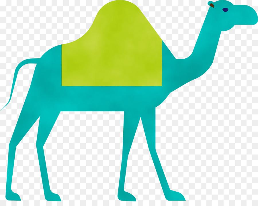 Descarga gratuita de Camello, Verde, árabe Camello imágenes PNG