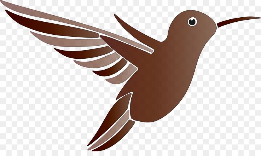 Descarga gratuita de Aves, Colibrí, El Colibrí Rufo imágenes PNG
