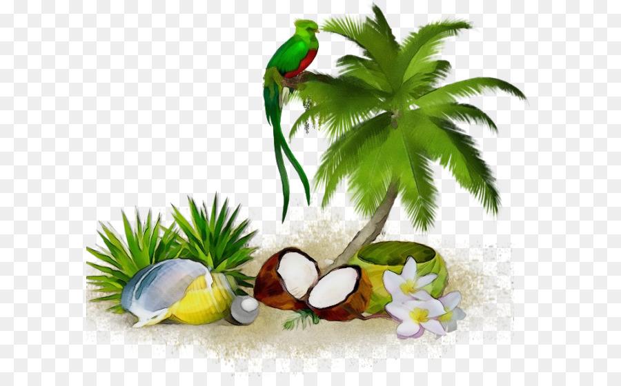 Descarga gratuita de Coco, árbol, La Hierba imágenes PNG