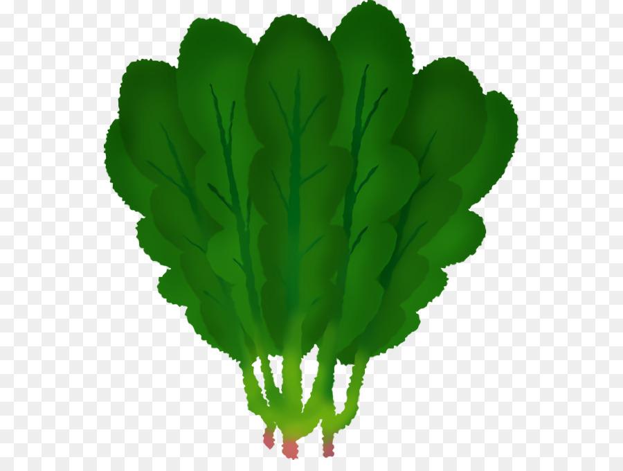Descarga gratuita de Hoja, Tallo De La Planta, Hoja Vegetal Imágen de Png