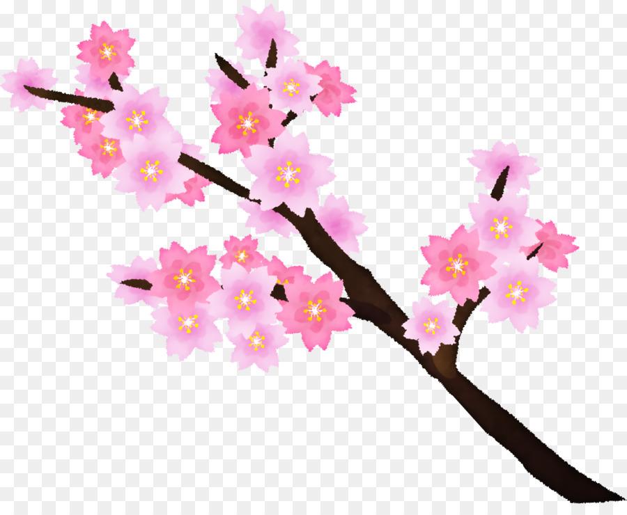 Descarga gratuita de De Los Cerezos En Flor, Tallo De La Planta, Diseño Floral Imágen de Png