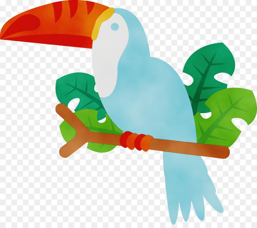 Descarga gratuita de Pico, Los Tucanes, Biología Imágen de Png