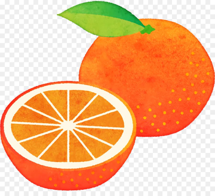 Descarga gratuita de Mandarina, Pomelo, Tangelo Imágen de Png