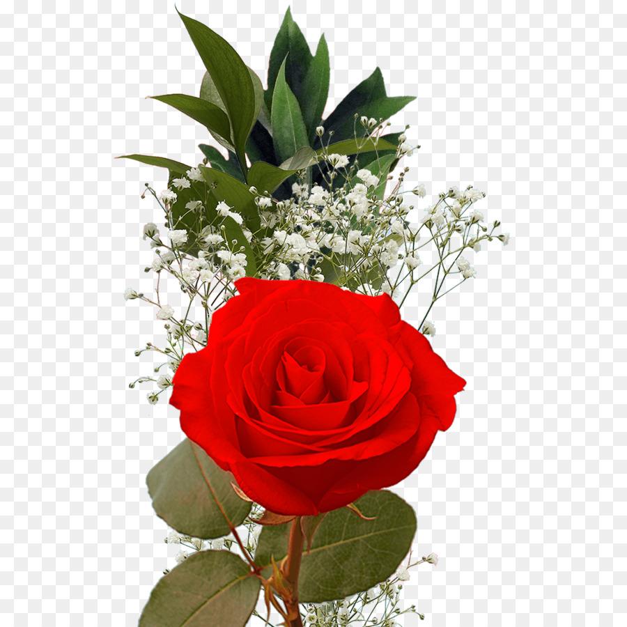 Descarga gratuita de Las Rosas De Jardín, Rosa, Ramo De Flores Imágen de Png