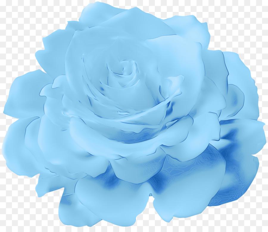 Descarga gratuita de Rosa Azul, Las Rosas De Jardín, Col Rosa Imágen de Png