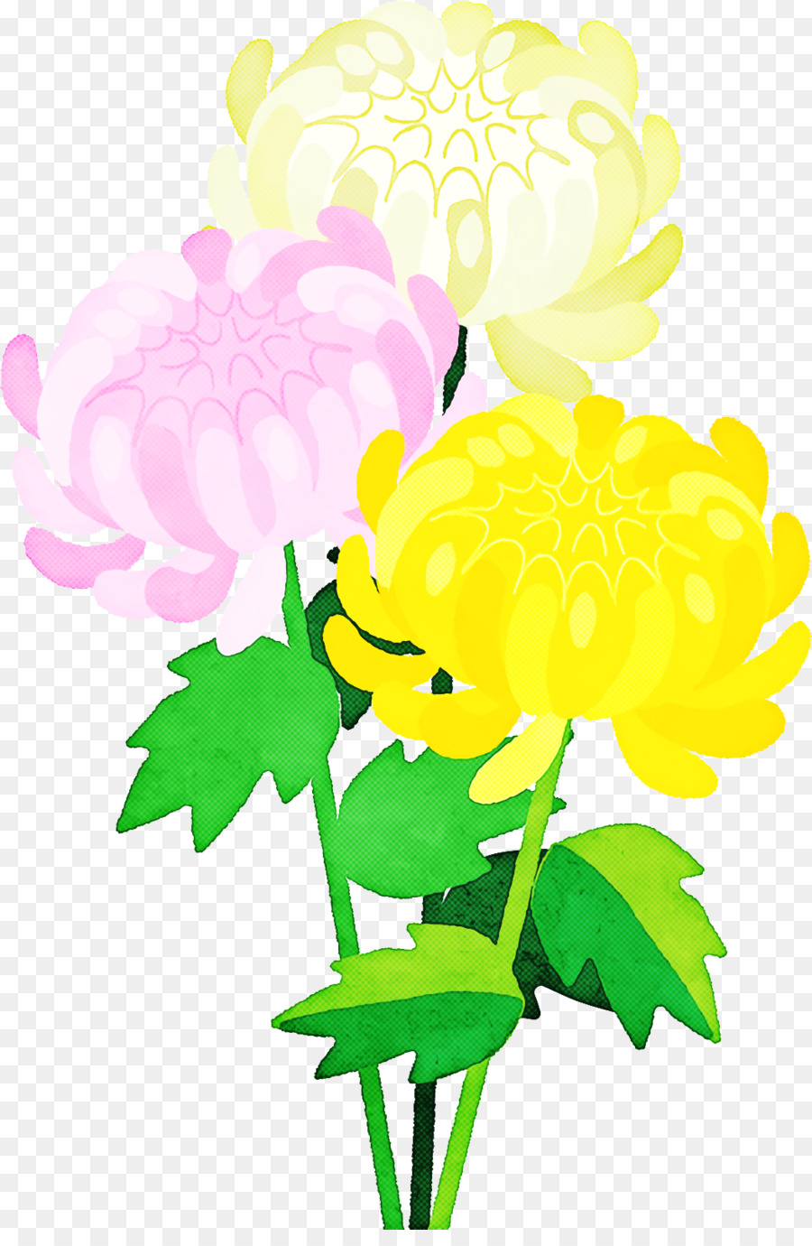 Descarga gratuita de Diseño Floral, Crisantemo, Las Flores Cortadas imágenes PNG