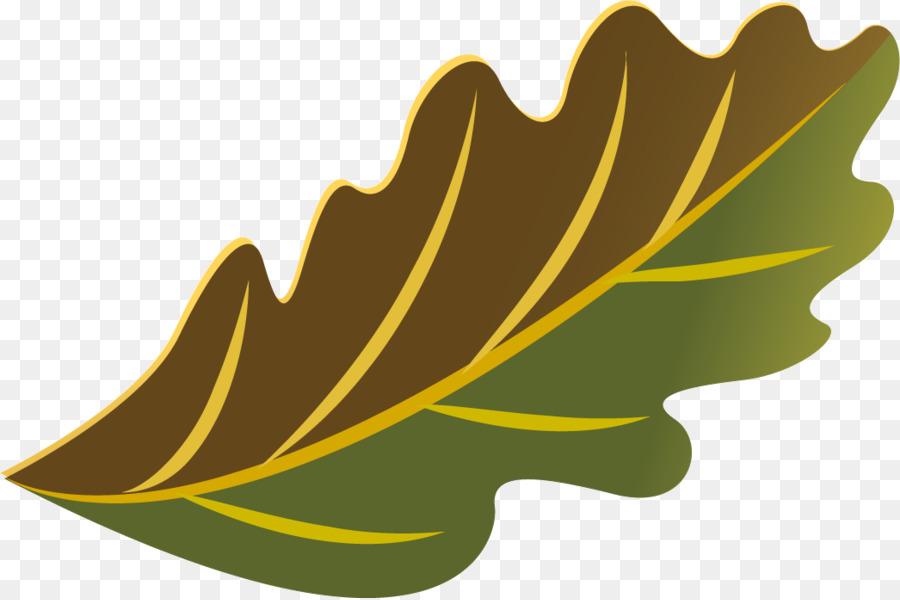 Descarga gratuita de Hoja, Mtree, árbol Imágen de Png