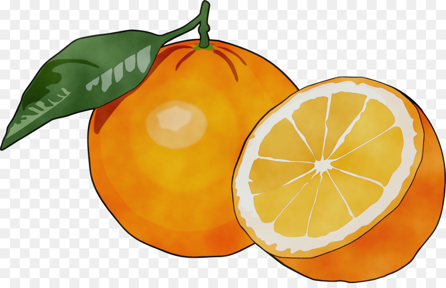 Descarga gratuita de Mandarina, Limón, Pomelo Imágen de Png