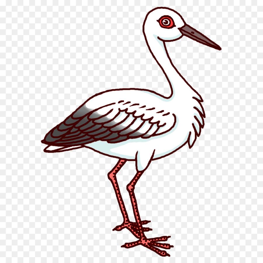 Descarga gratuita de Aves, Cigüeña Blanca, Pelecaniformes Imágen de Png