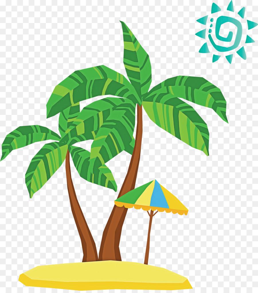 Descarga gratuita de Hoja, Los árboles De Palma, Queso Suizo Planta Imágen de Png