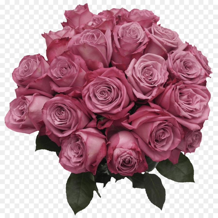 Descarga gratuita de Las Rosas De Jardín, Floribunda, Col Rosa Imágen de Png