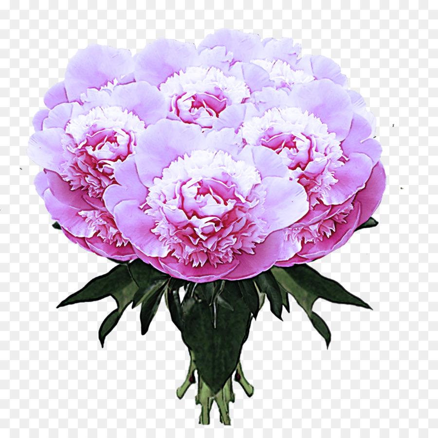 Descarga gratuita de Peonía, Diseño Floral, Común De La Peonía Imágen de Png