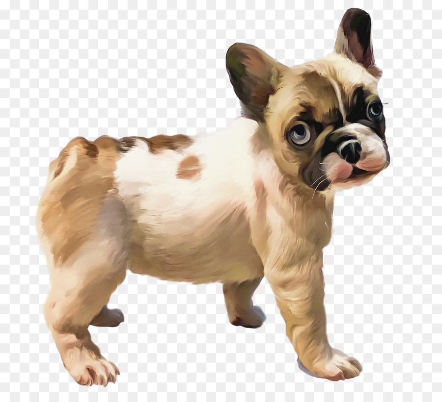 Descarga gratuita de Bulldog Francés, Toy Bulldog, Cachorro Imágen de Png