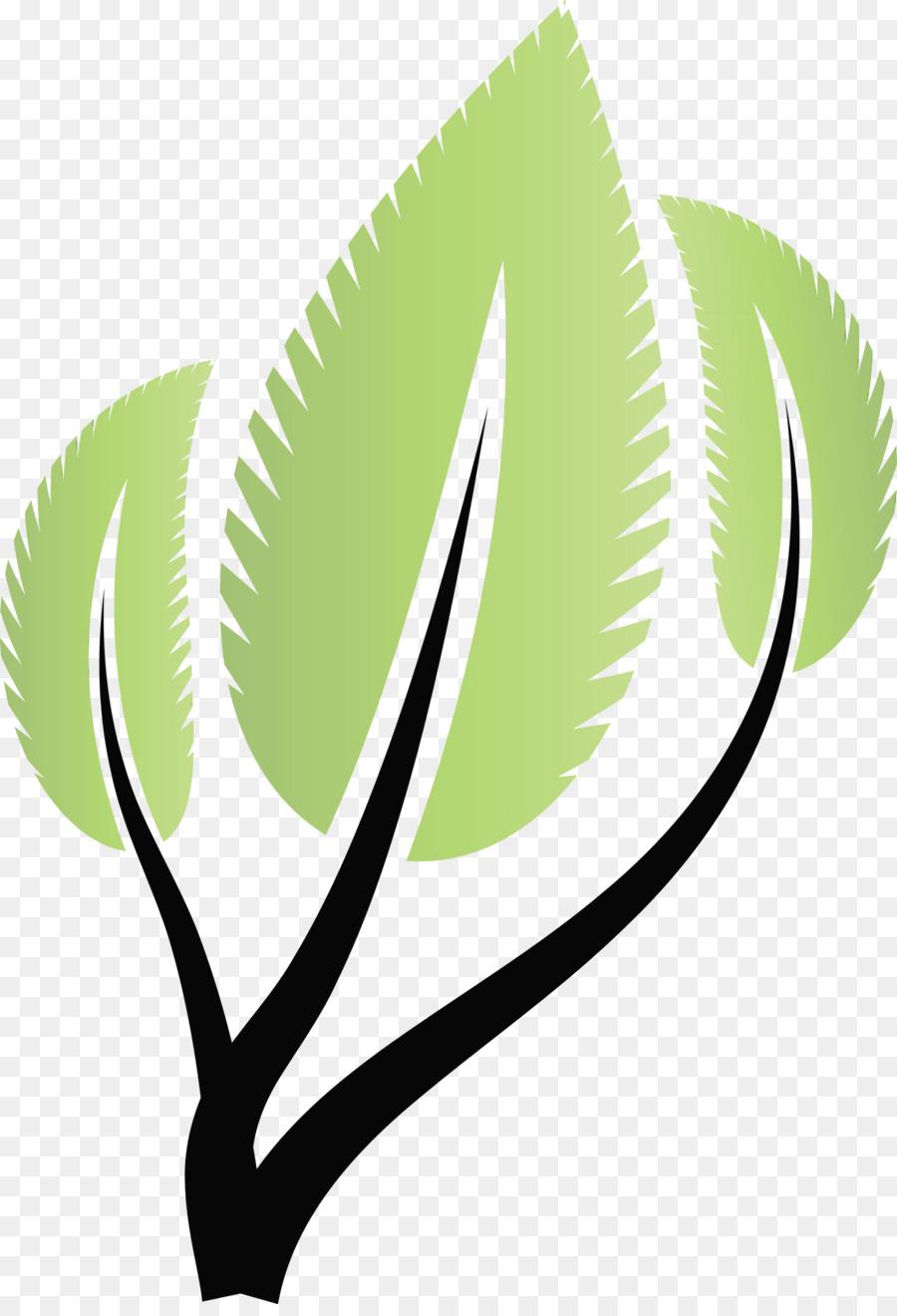 Descarga gratuita de Limonada, Té Verde, Bergamota De Naranja Imágen de Png