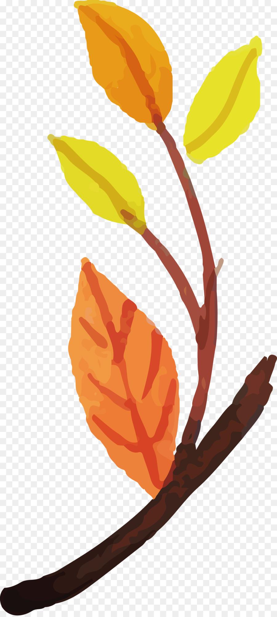 Descarga gratuita de Tallo De La Planta, Hoja, Pétalo Imágen de Png