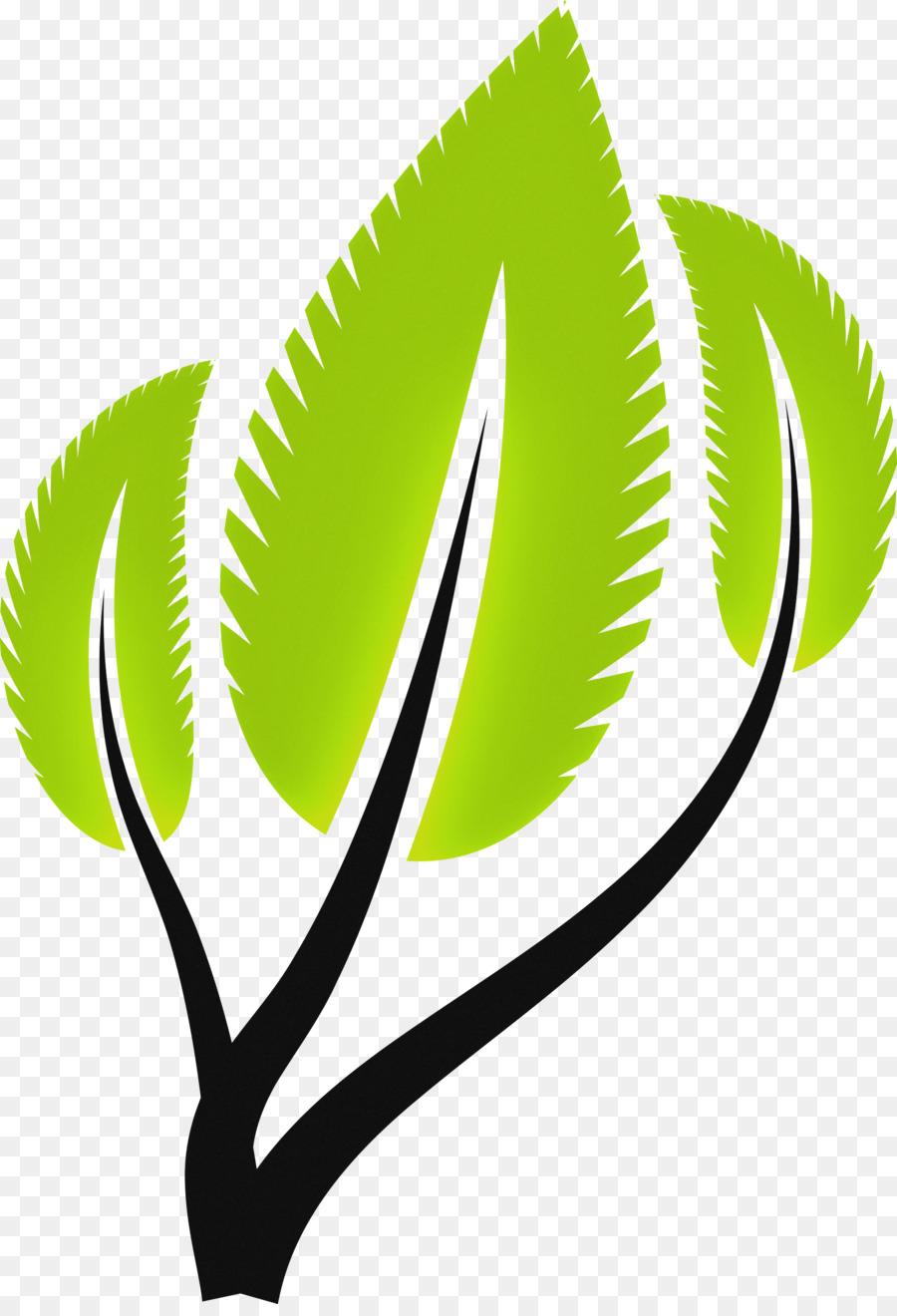 Descarga gratuita de Té Verde, Limonada, Té Imágen de Png