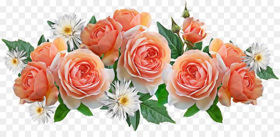 Descarga gratuita de Las Rosas De Jardín, Diseño Floral, Col Rosa Imágen de Png