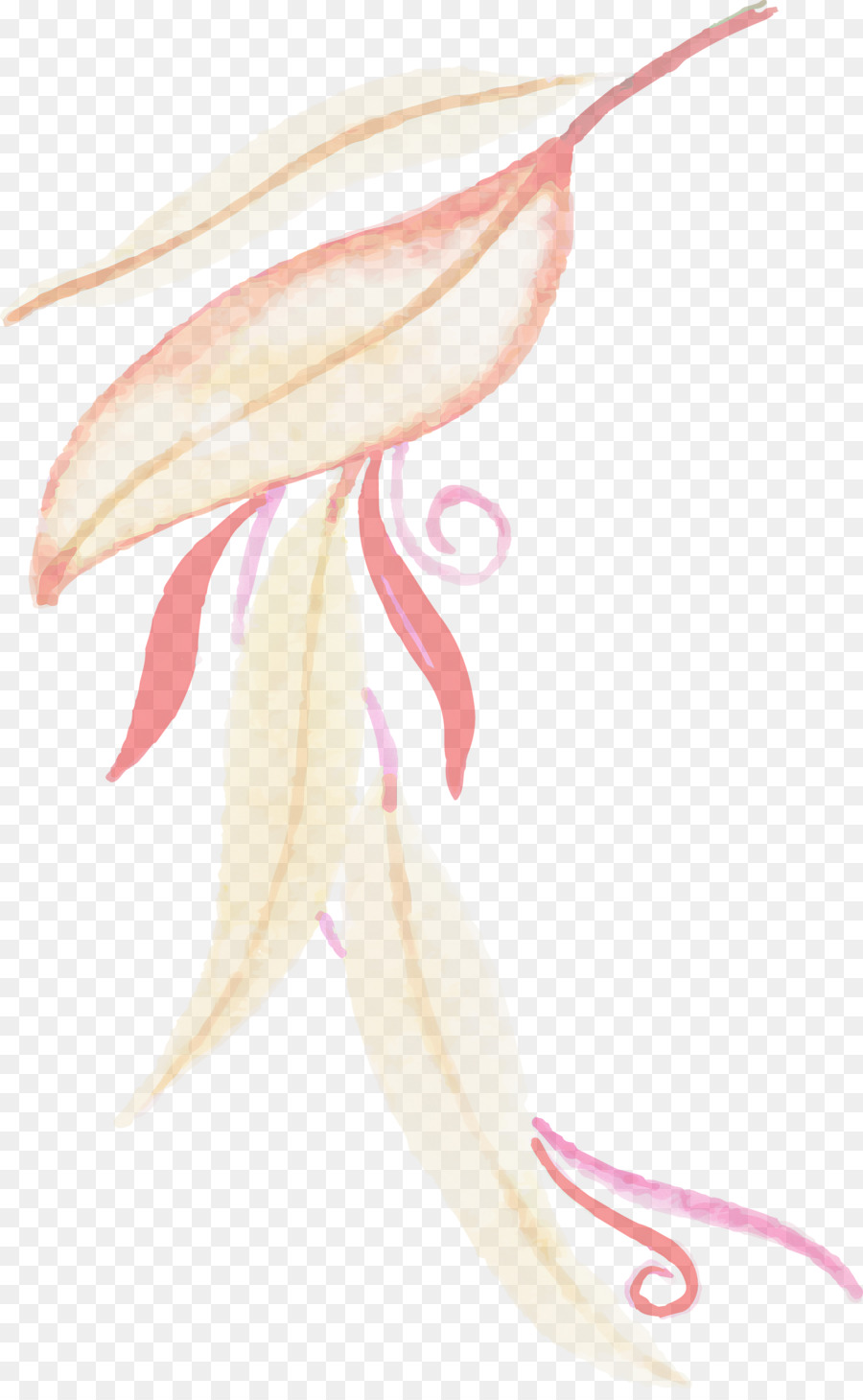 Descarga gratuita de Flor, Dibujo, M02csf Imágen de Png