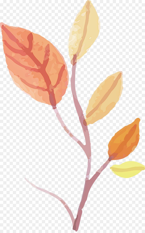 Descarga gratuita de Flor, Tallo De La Planta, Hoja Imágen de Png