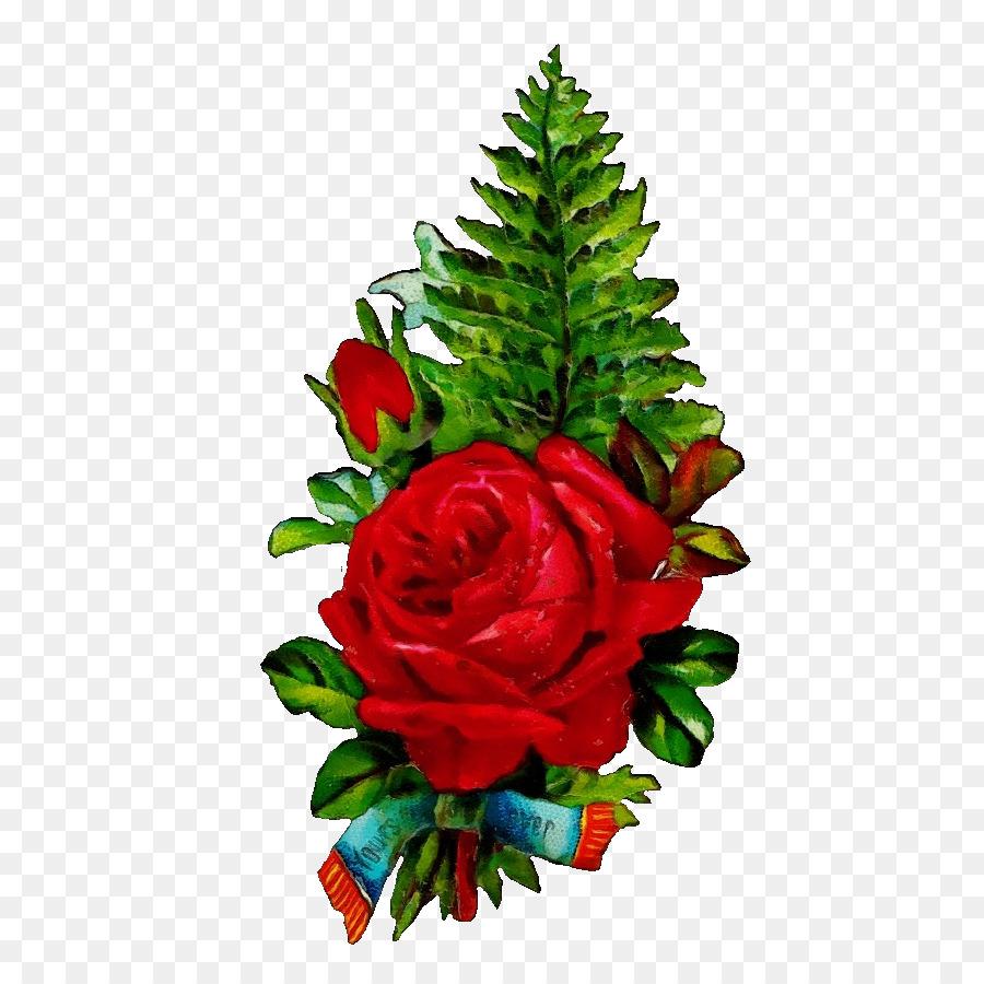 Descarga gratuita de Rosa, Ramo De Flores, Las Rosas De Jardín Imágen de Png