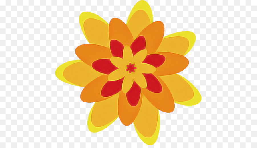Descarga gratuita de Diseño Floral, Flor, Pétalo Imágen de Png