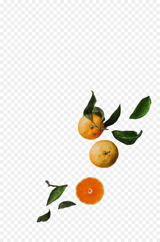 Descarga gratuita de Calamansi, Mandarina, Tangelo Imágen de Png