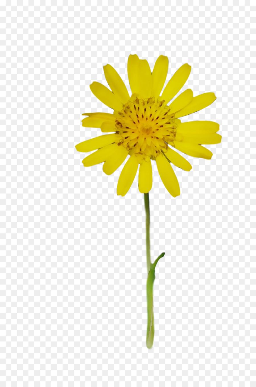 Descarga gratuita de Tallo De La Planta, Flor, Flores Artificiales Imágen de Png