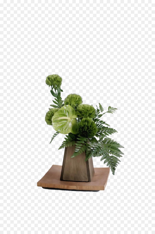 Descarga gratuita de Diseño Floral, Planta De Interior, Hierba Imágen de Png